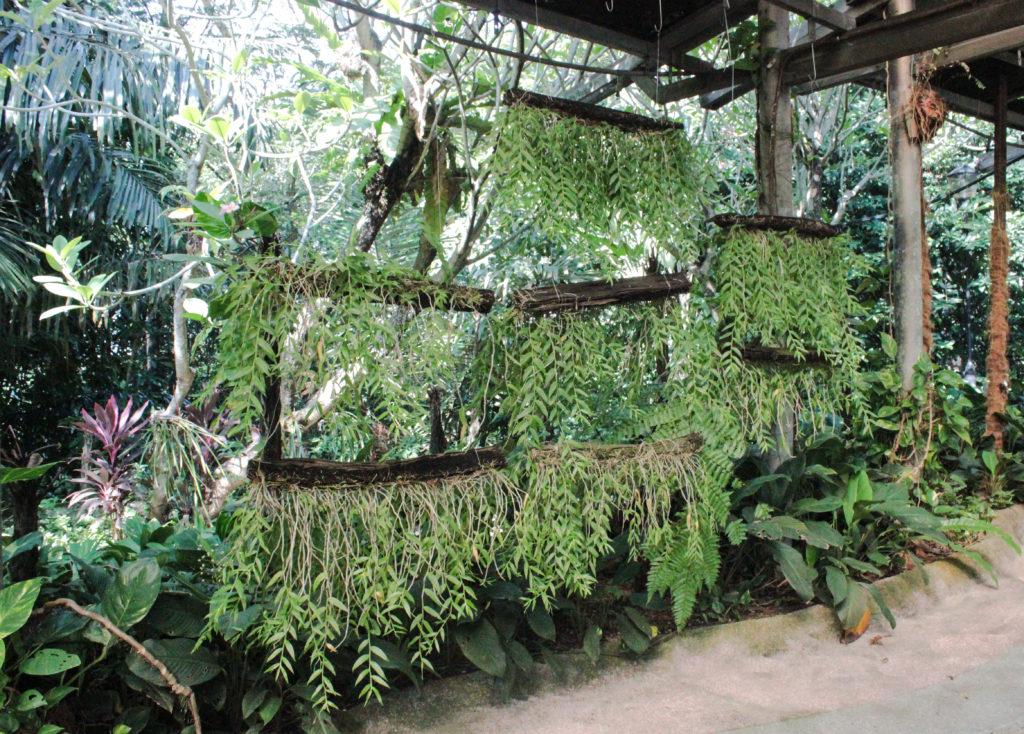 Image du Perdana Botical Garden