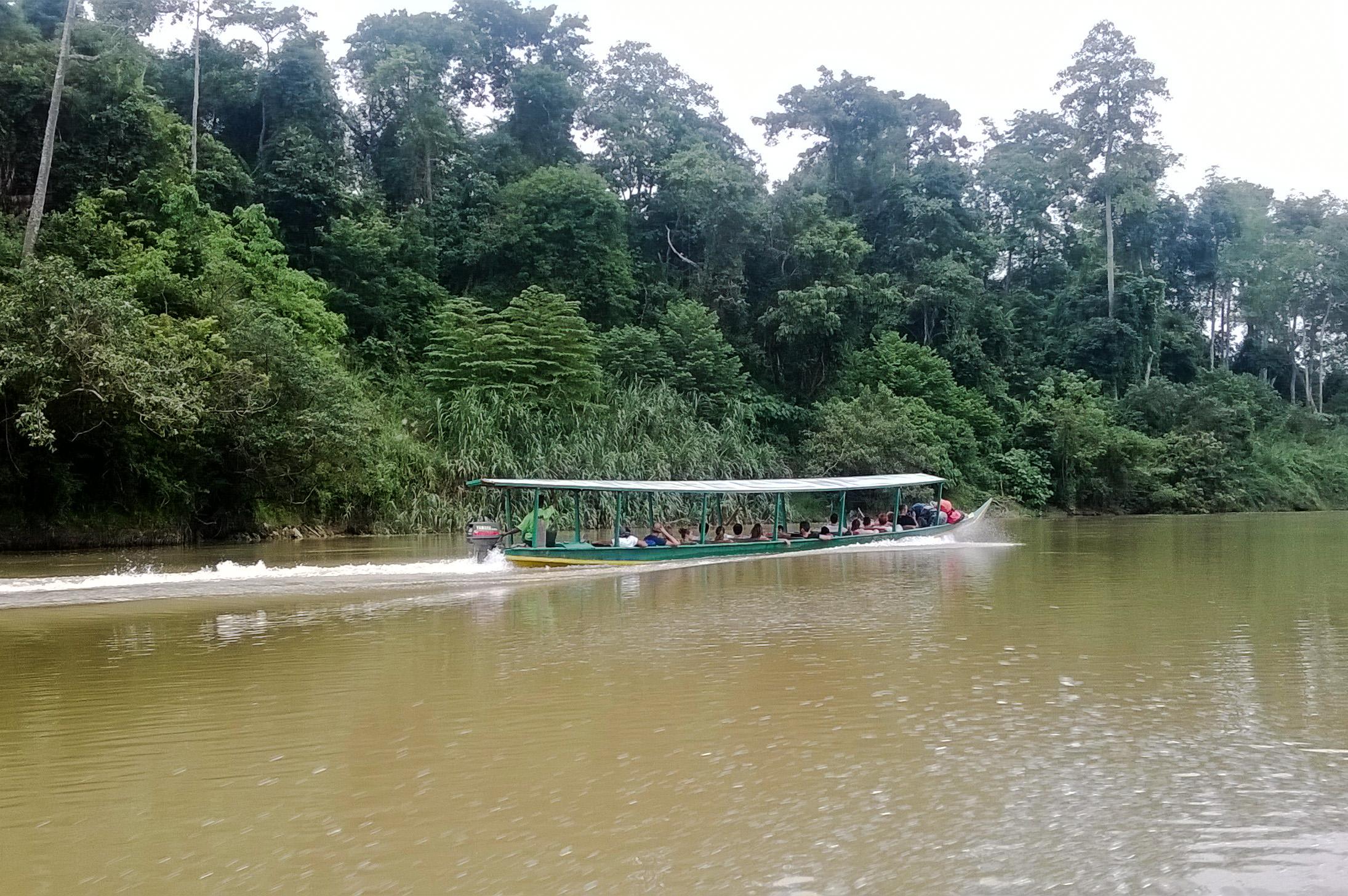Image d'une pirogue sur le fleuve du Taman Negara