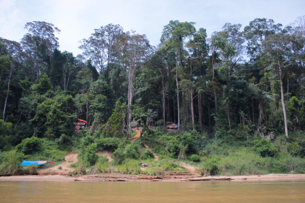 Image du village d'Orang Asli