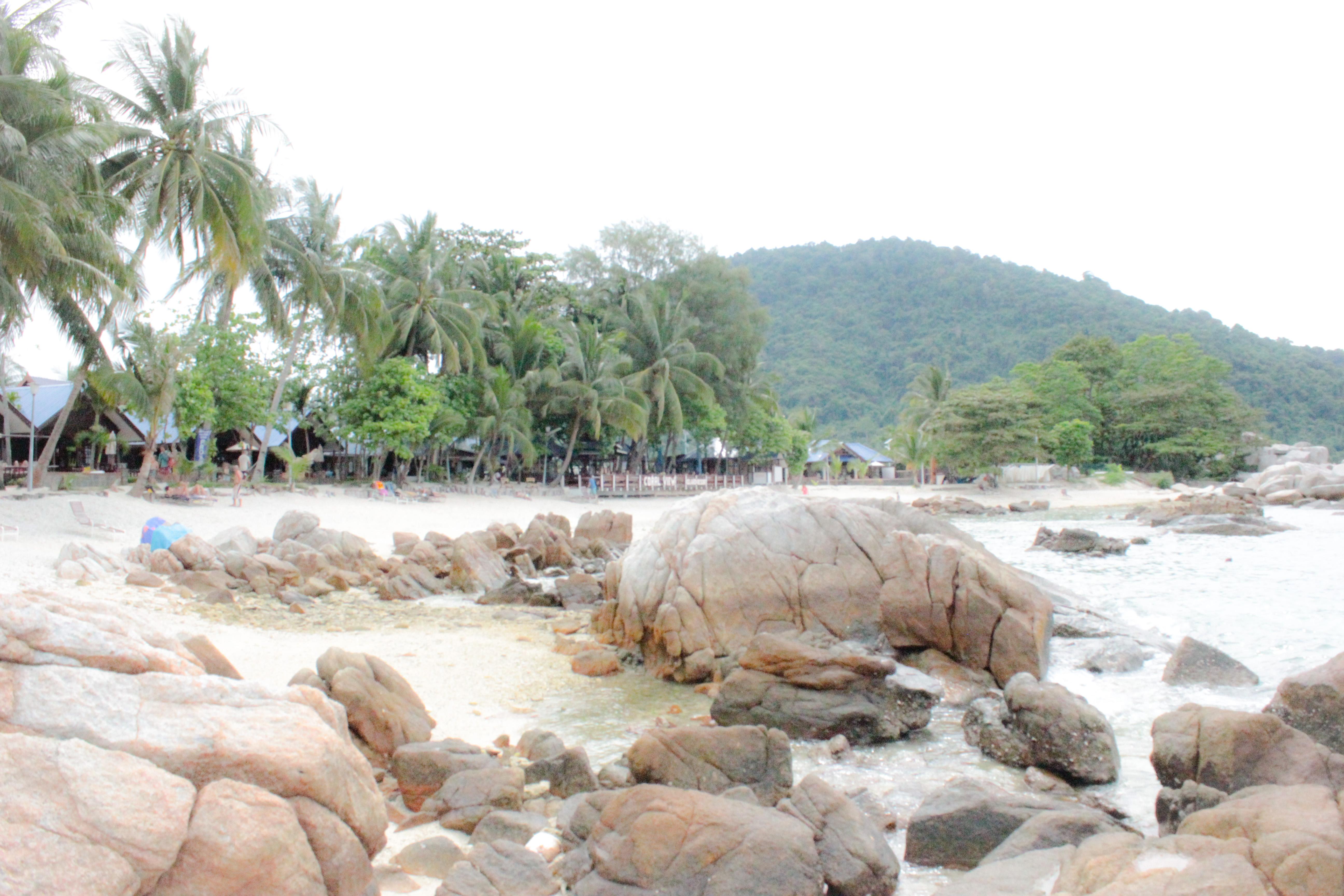 Image de la plage du Coral view island resort