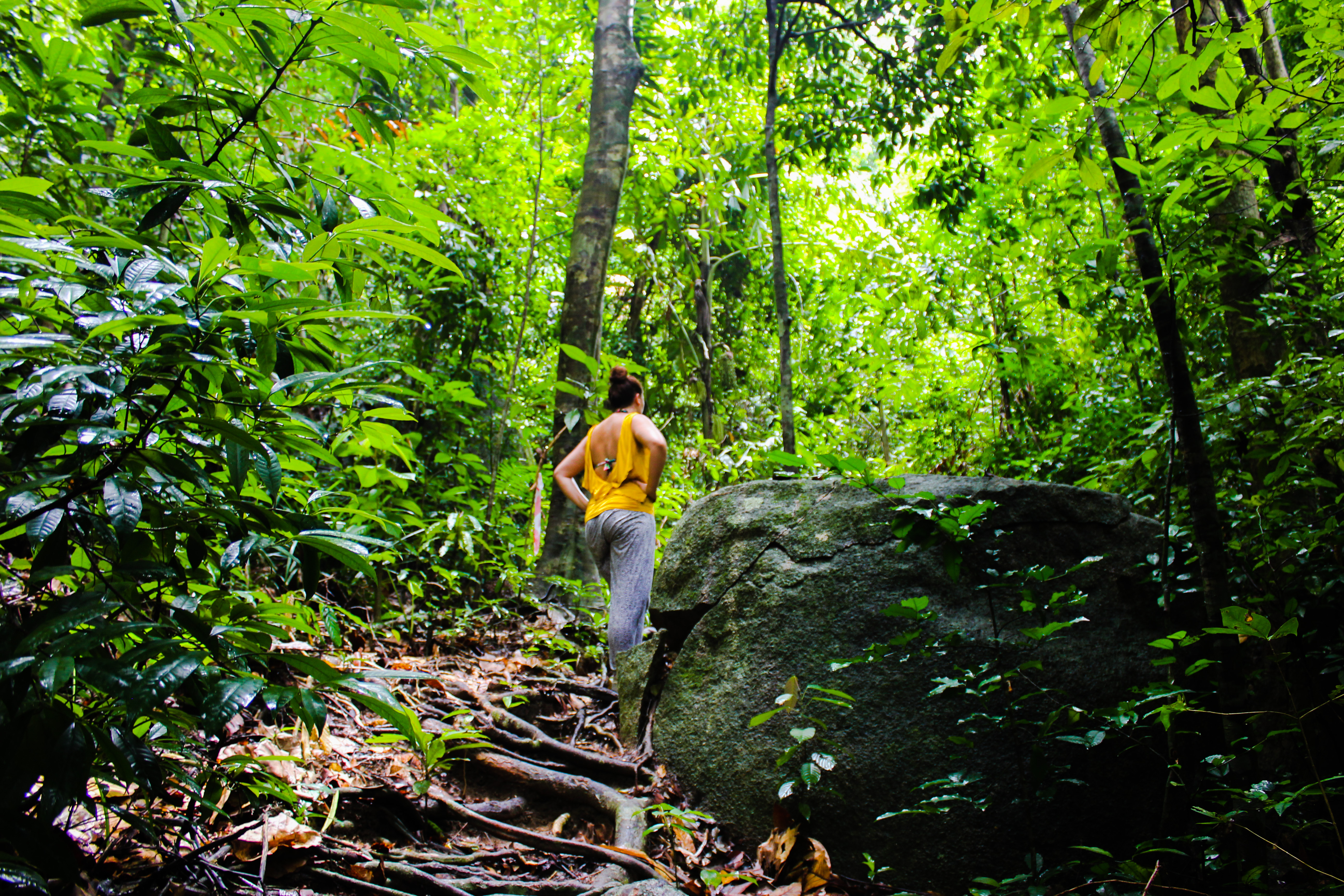 Image d'une femme dans la jungle de Pulau Besar