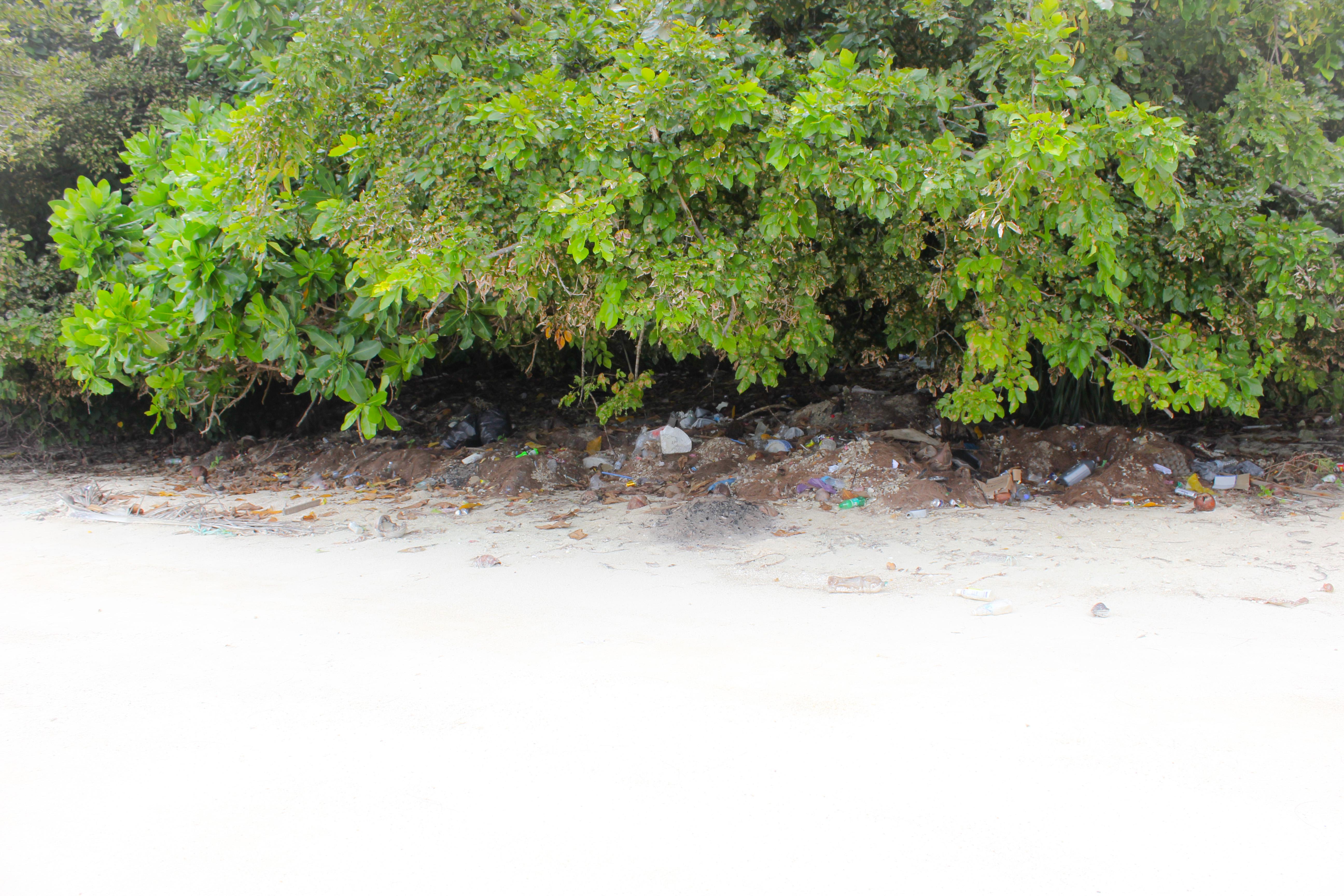 Image de déchets sur la plage de Florabay