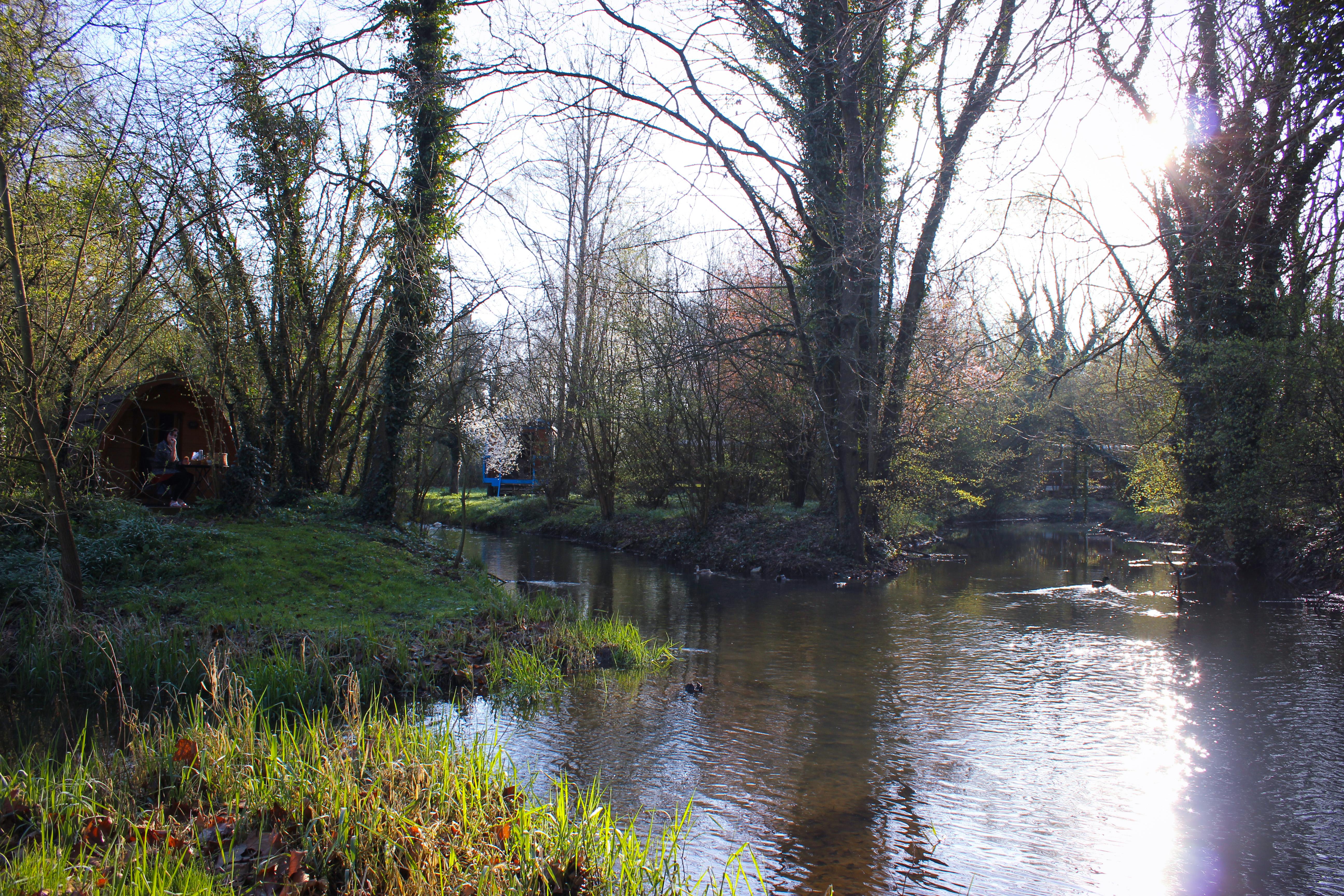 Image de la rivière de la maison de l'Omignon