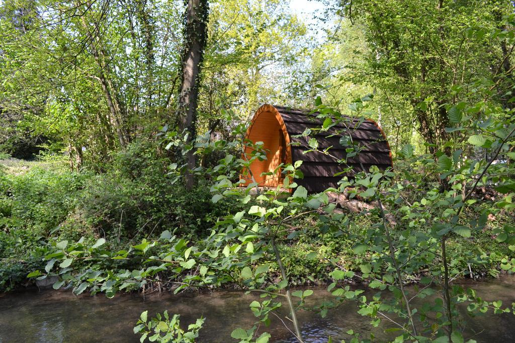 Image du Pod dans la forêt de la maison de l'omignon